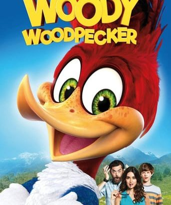 "Affiche du film ""Woody Woodpecker"""