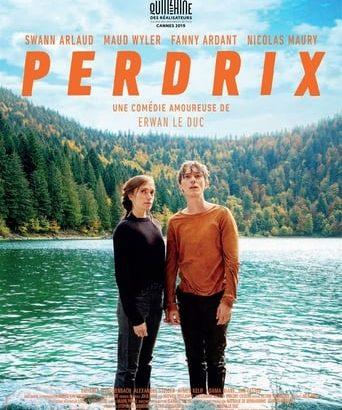 """Affiche du film """"Perdrix"""""""
