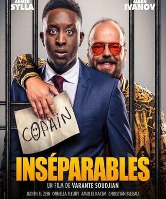 """Affiche du film """"Inséparables"""""""