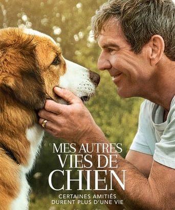 """Affiche du film """"Mes autres vies de chien"""""""